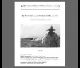 IEI (2007) Diagnóstico participativo sobre el desempleo en Los Ángeles de Malacatoya